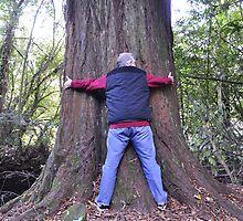 Treehugger by Donna/Lars Tovander