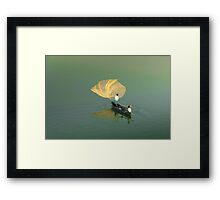 "same old "" net throwing""  Framed Print"