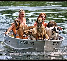 Dog Ferry by Mikell Herrick