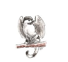 Sketch -- Mythological House Griffin, Chickadee Variety Photographic Print