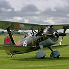 Polikarpov I-15bis Chaika 4439 white 19 by Colin Smedley
