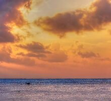 Red sky at night, sailor's delight ... or whale's tail by Chris Brunton