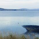 Gunters Bay Flinders Island by Andrew  Makowiecki