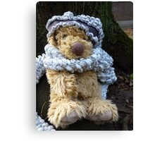 Puppy In A Shawl: Winter Is Cold Canvas Print