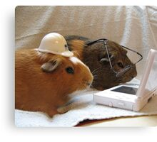 Pigs at Work Canvas Print