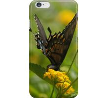 Butterfly landing on yellow flower iPhone Case/Skin