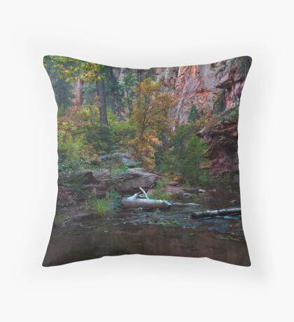 Echoes of Serenity Throw Pillow