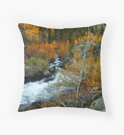 High Sierra Magic Throw Pillow