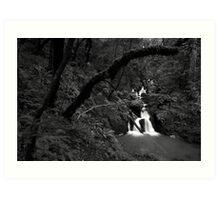 Cataract Falls, Marin County Art Print