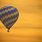 Hot Air Balloon Golden Flight by Bo Insogna