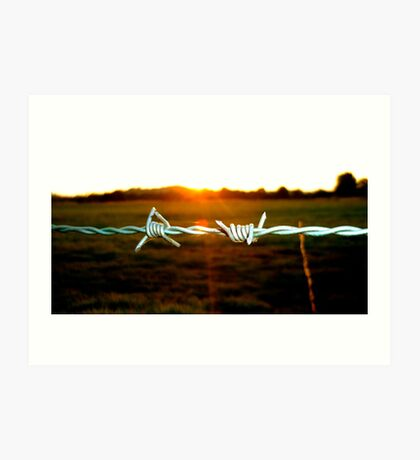 Barbed wire in the evening Art Print