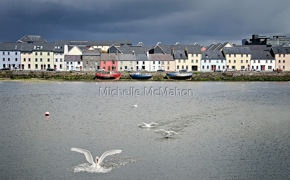 Galway Swans by Michelle McMahon