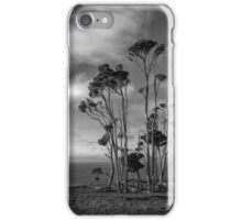 Melaleuca Trees iPhone Case/Skin