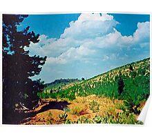 Toward Mahogany Mountain Poster