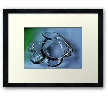 Fish Ashtray Framed Print