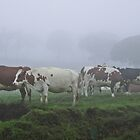 Milkmaids in the mist (please read description) by Kanages Ramesh