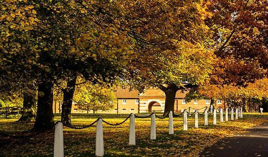 Autumn at Wiseton Stables by John Dunbar