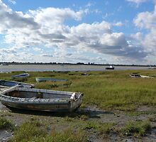 Stranded  near Two Tree Island at Leigh in Essex by Sandra Caven