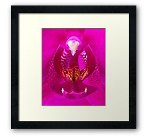 The Inner Sanctum Framed Print