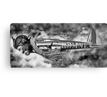 Is it a Bird is it a Plane No its Romney. Canvas Print
