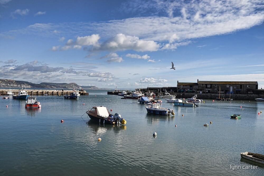 Lovely November Day In Lyme , Dorset, UK by lynn carter