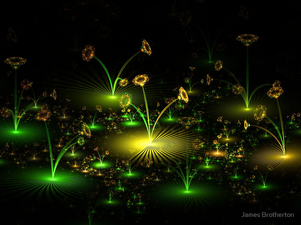 Cellophane Flowers by James Brotherton