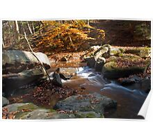 Rushing water of fall Poster