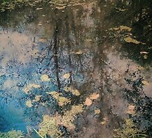 Fish Trap Creek by Annie Lemay  Photography