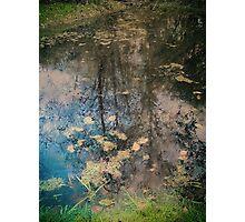Fish Trap Creek Photographic Print