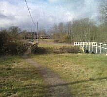 Path to the bridge by Mick Bull