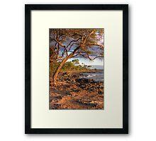 Hawaiian shores Framed Print