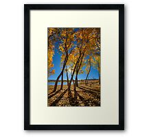Skinny Fall Framed Print