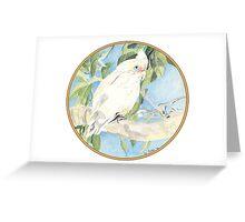 Corella, Birds of Hepburn, 2012 Greeting Card