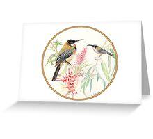 Eastern Spinebilled Finch, Birds of Hepburn, 2012 Greeting Card