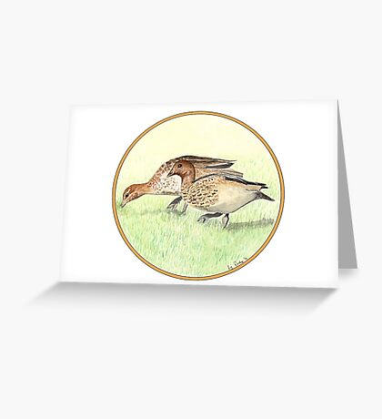 Wood Ducks, Birds of Hepburn, 2012 Greeting Card