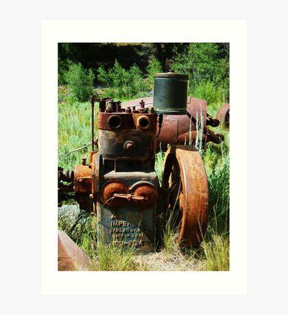 Rusty Equipment - Custer, Idaho Art Print