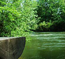 Bench Along The Boise River - Eagle, Idaho by CADavis