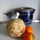 Still Life with Bird by TrixiJahn
