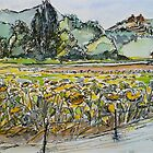 Sunflowers, La Vigna, Anghiari, Italy. Pen and wash. Framed 42x32cm 2010Ⓒ by Elizabeth Moore Golding
