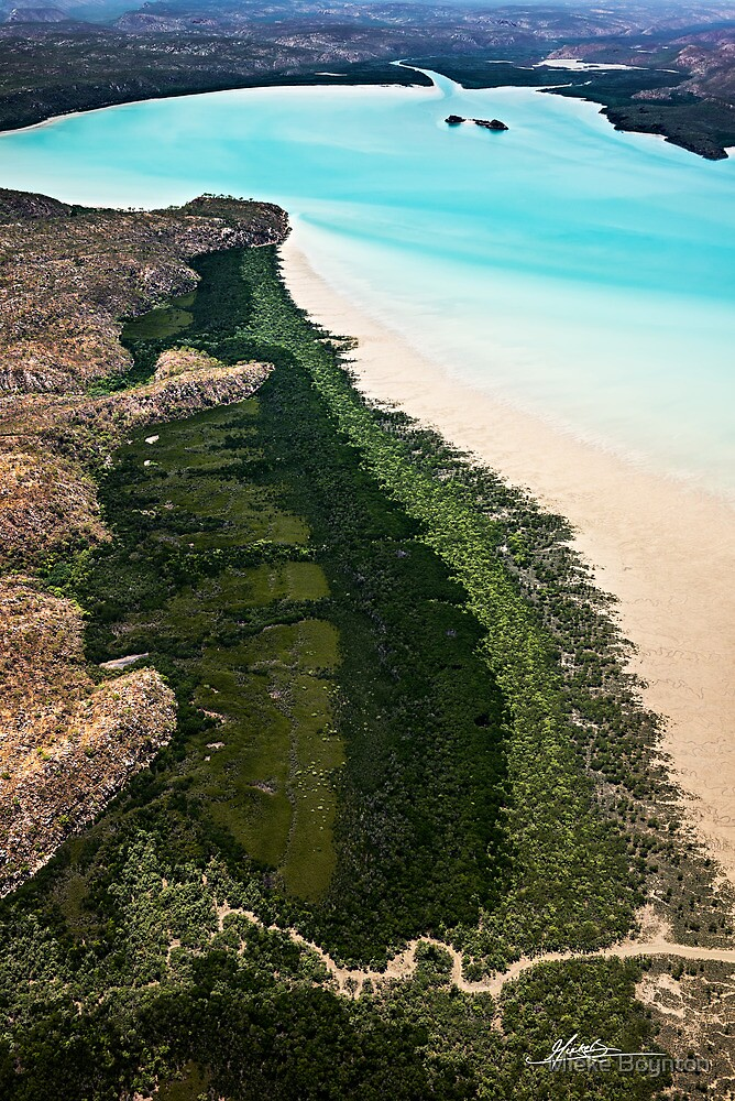 Where Nature Reigns by Mieke Boynton