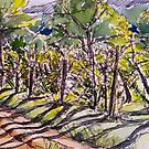 Vineyard, early morning. La Vigna. Italy. Pen and wash 2010Ⓒ 42x32cm framed. by Elizabeth Moore Golding