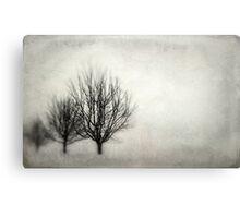 Winter in Matsqui Canvas Print
