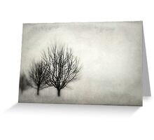 Winter in Matsqui Greeting Card