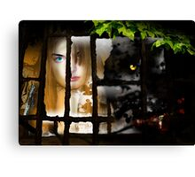The Wolf at the Window Canvas Print