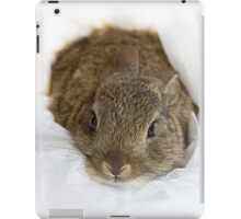 Rabbit Ipad Case iPad Case/Skin