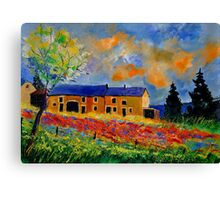 poppies in houroy 57 Canvas Print