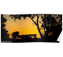 Sunset at Bold Park Poster