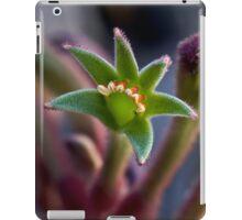 Kangaroo paw for iPad iPad Case/Skin
