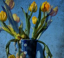 Yellow tulips with polka dots by brut