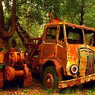 Rusty Trusty & the Bulldozer by Michael Matthews
